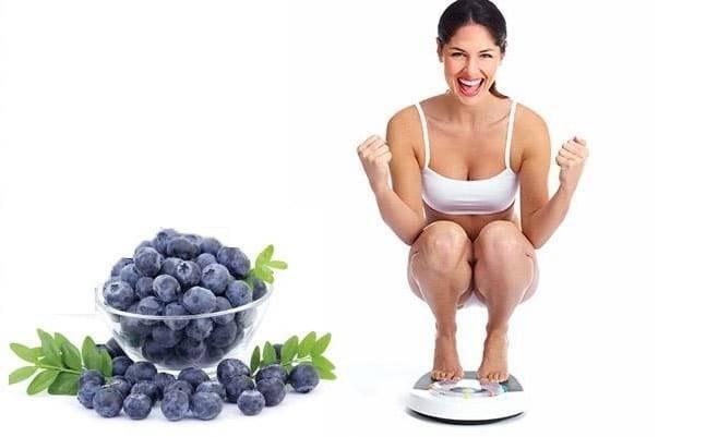 Việt quất rất tốt cho quá trình giảm cân