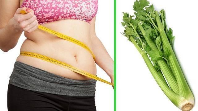 Bạn có thể giảm cân bởi hàm lượng calo trong cần tây là rất nhỏ