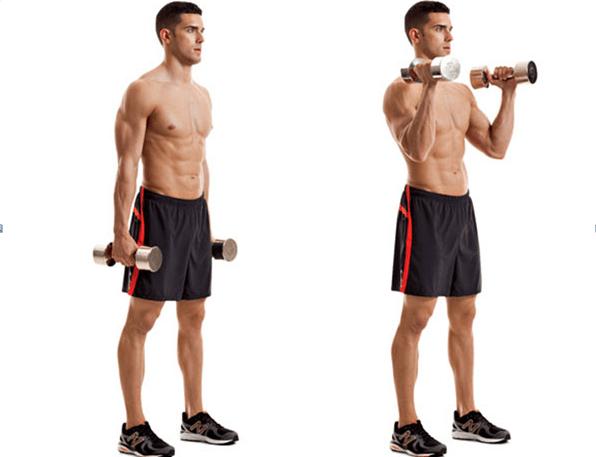 Bài tập giảm mỡ bắp chân cho nam – Standing Dumbbell Calf Raise