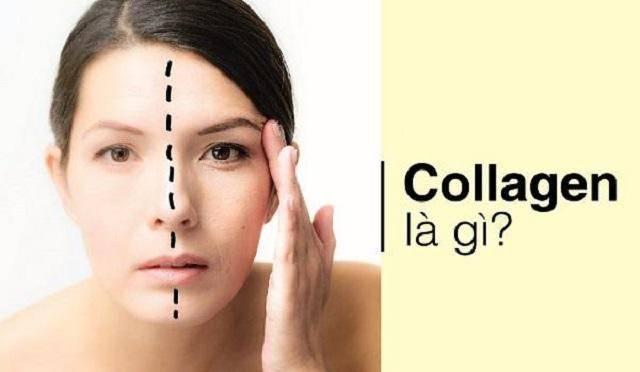 Collagen là gì? Những tác dụng không ngờ tới của Collagen trong đời sống