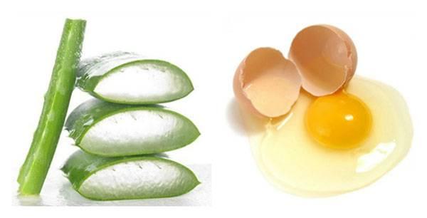 Mặt nạ trứng gà và nha đam phù hợp với làn da khô