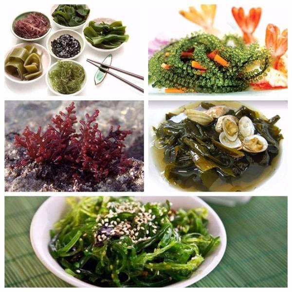 Những món ăn được chế biến từ rong biển có tác dụng giúp trẻ hóa làn da từ bên trong